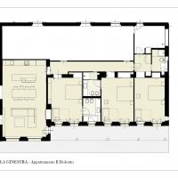 GINESTRA-Pianta-1°-LIVELLO-Dolcetto-1024x724