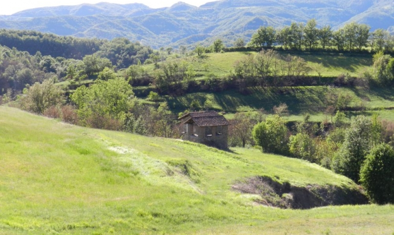 Two small rustic stone houses immersed in the green of the Langhe above Spigno Monferrato