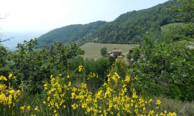 Beautiful stone house completely restored with ample lanrgeds in the goous valleys above Mombaldone
